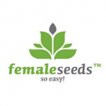 Female seeds company Auto AK female Seeds