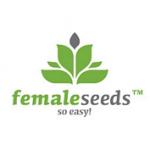 Female seeds company Auto AK female Seeds