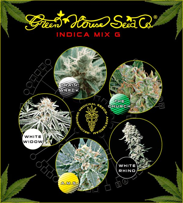 Greenhouse Seed Co. Indica Mix G
