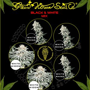 Greenhouse Seed Co. Black and White Mix-5Seeds