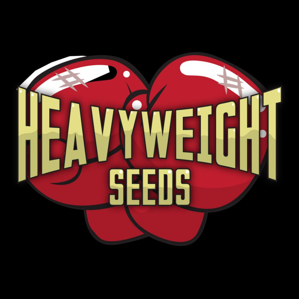 heavyweight seeds large