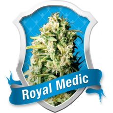 Royal Queen Seeds Royal Medic female Seeds