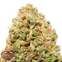 Heavyweight Seeds Strawberry Cake female Seeds