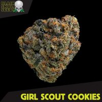 Blackskull Girls Scout Cookies feminized seeds