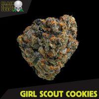 Blackskull Girls Scout Cookies feminized seeds