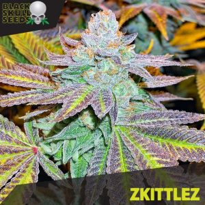 zkittlz female seeds